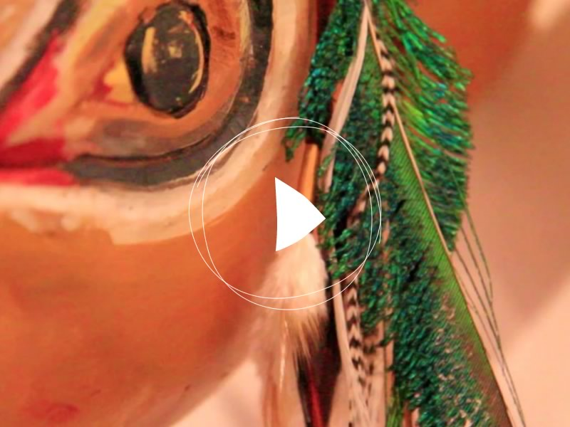 Ruby-feathers-storie-video